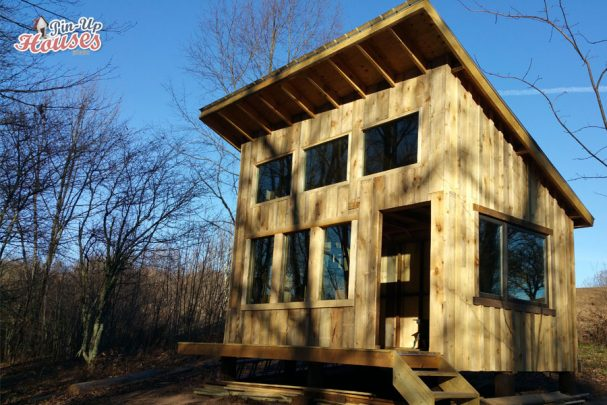 cabin plans facade with windows
